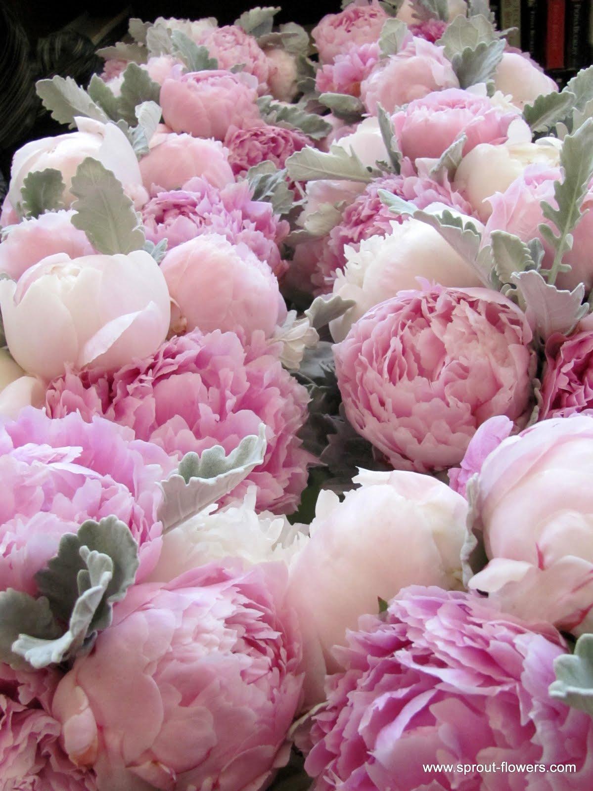 Svatební kytice :) - Obrázek č. 34