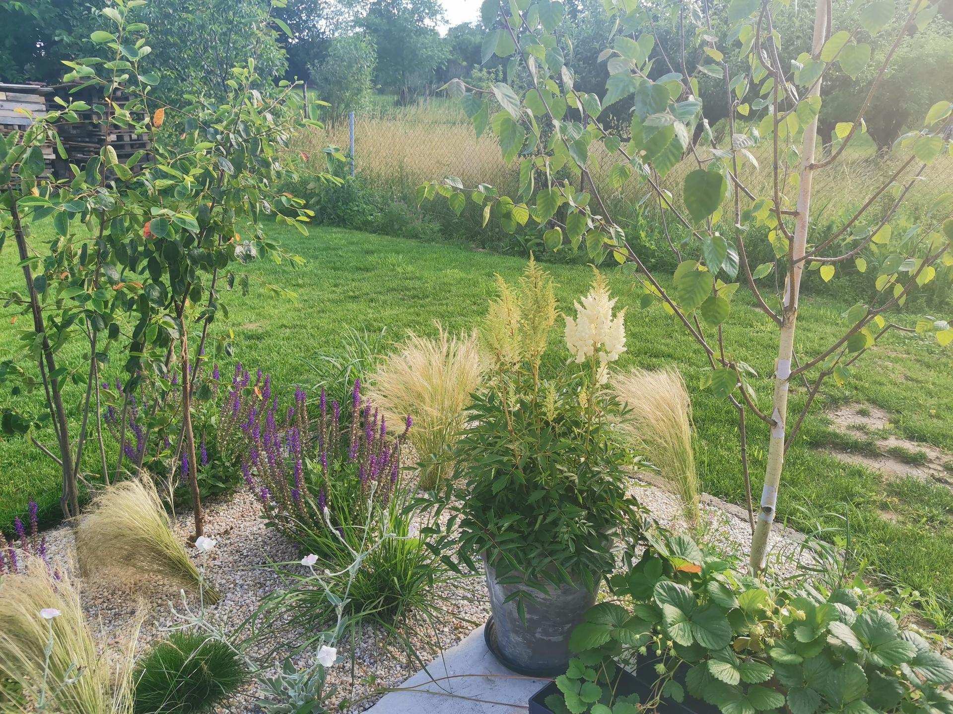 Začínáme se zahradou