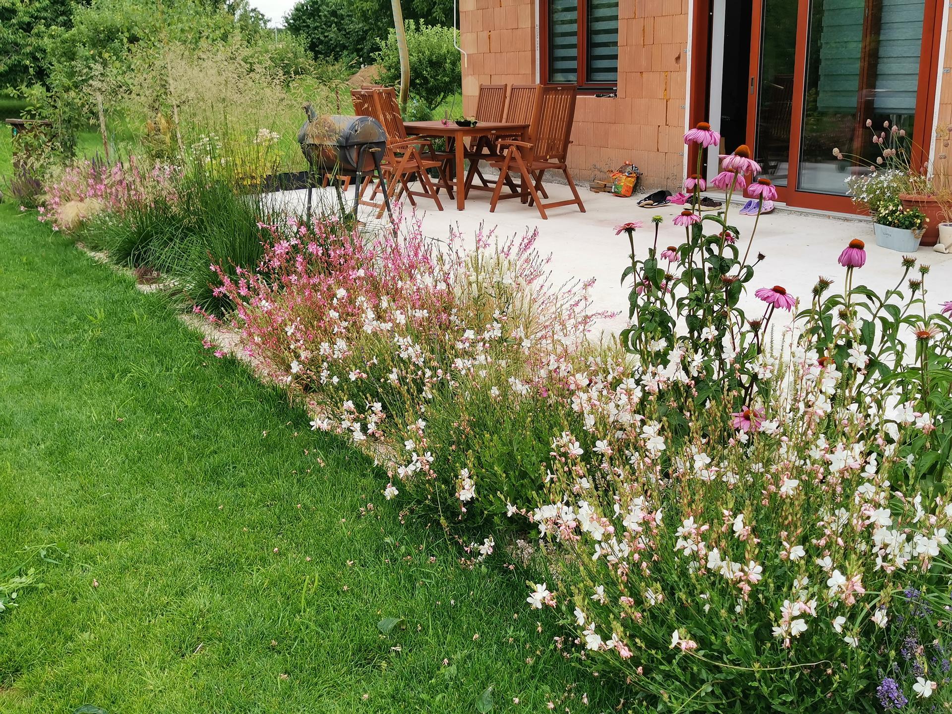 Začínáme se zahradou - Obrázek č. 22
