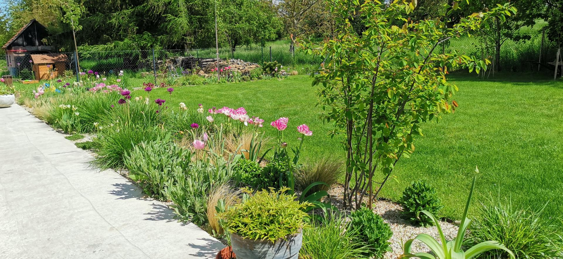Začínáme se zahradou - Obrázek č. 40