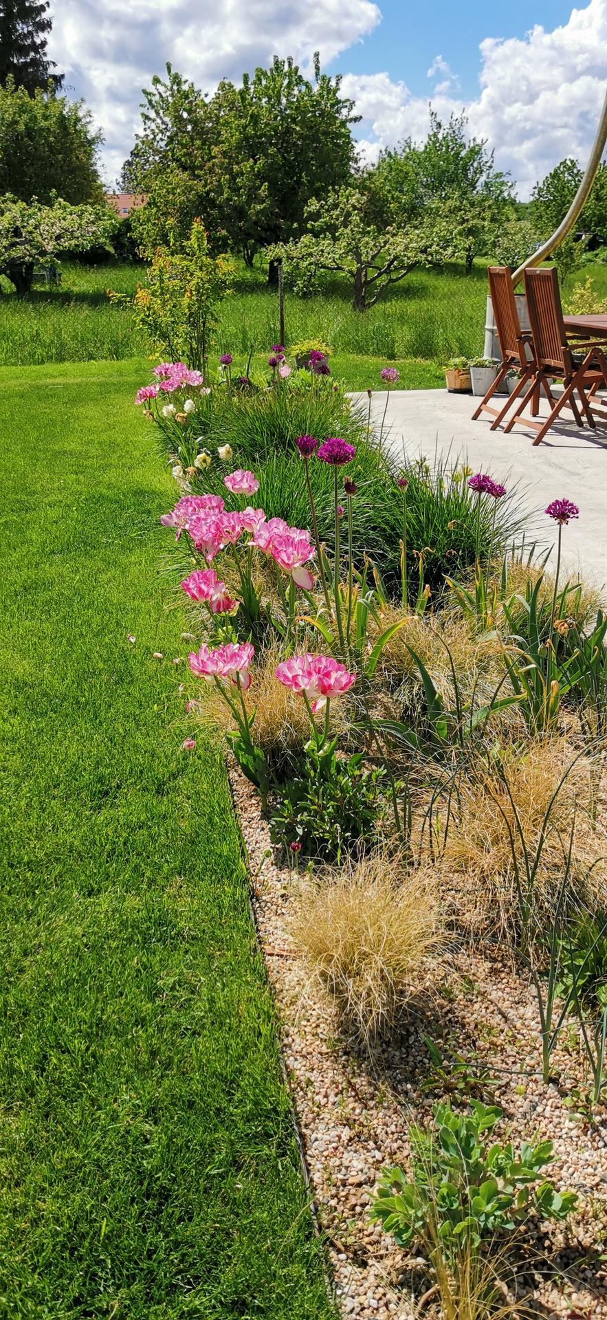 Začínáme se zahradou - Obrázek č. 38