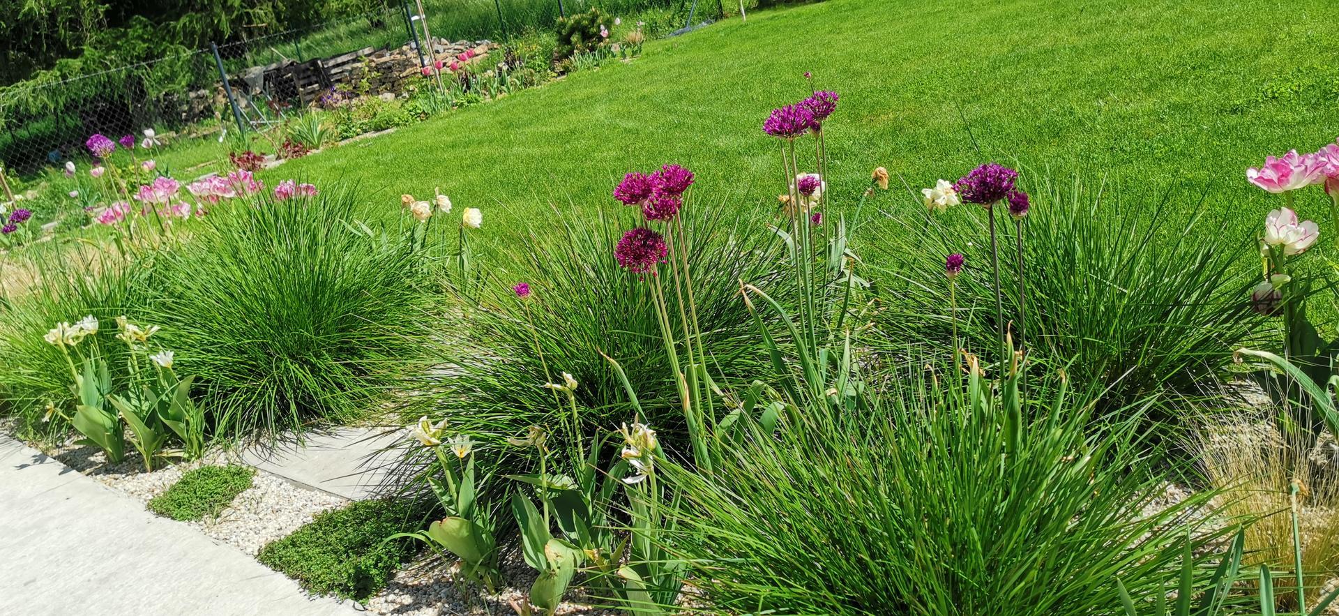Začínáme se zahradou - Obrázek č. 39