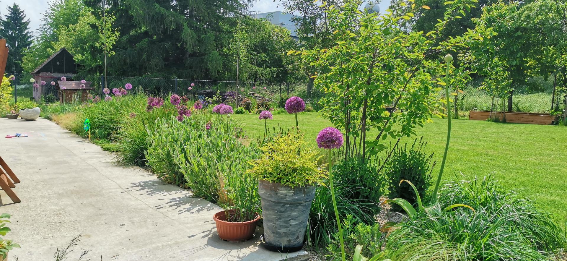 Začínáme se zahradou - Obrázek č. 48