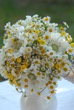 Jak častá je na svatbách bílo-žlutá kombinace? Setkali jste se s tím? Já ještě ne...