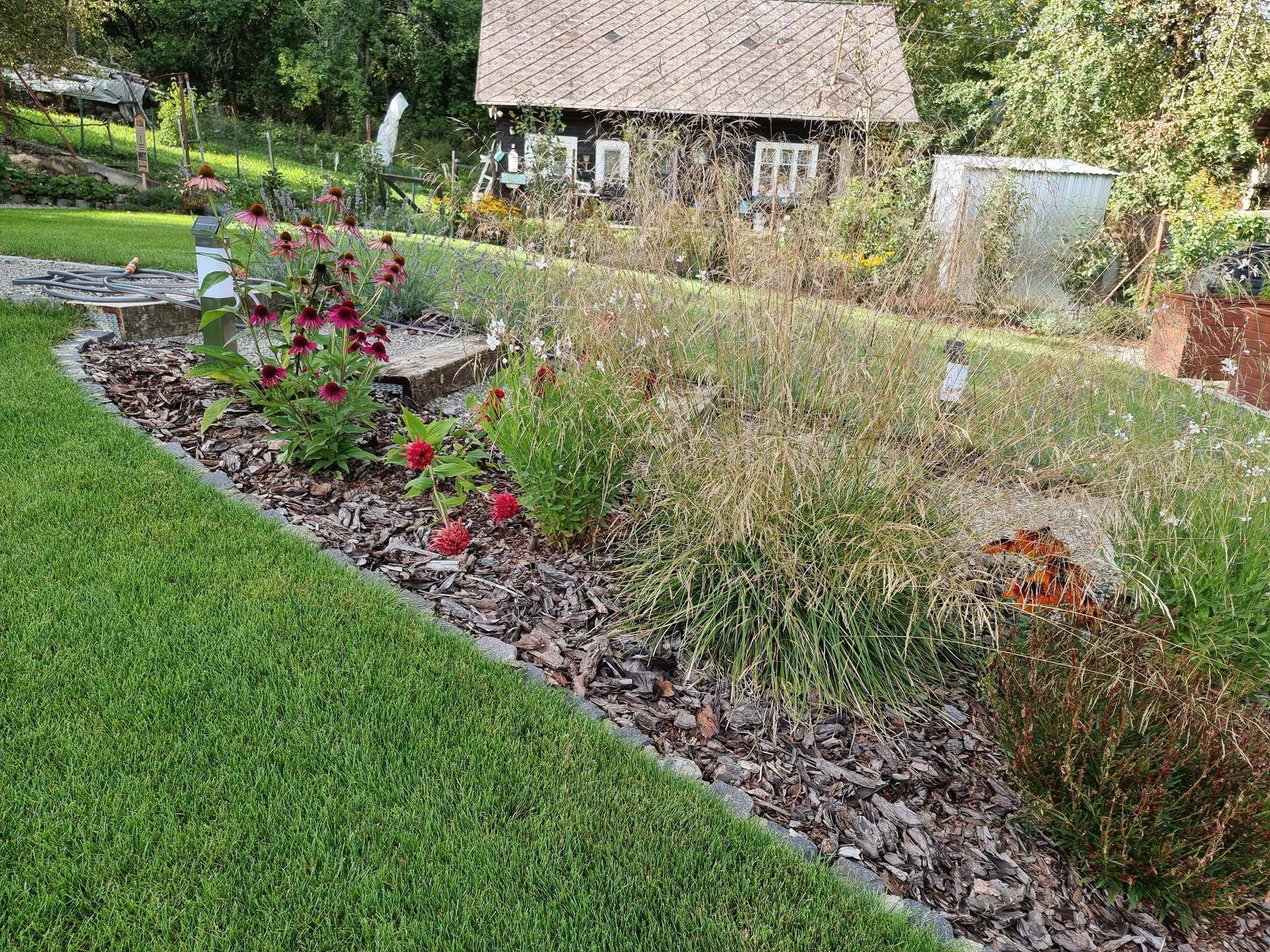 Rok v zahrade... - Obrázok č. 42