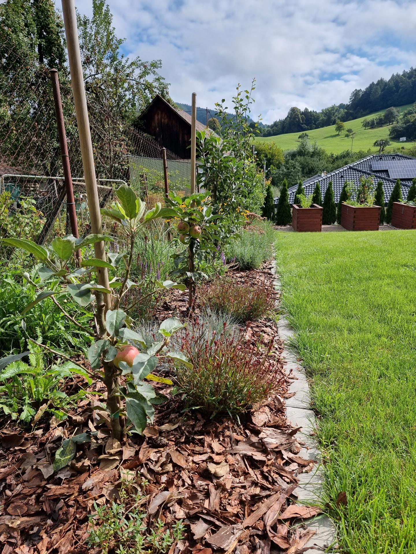 Rok v zahrade... - Obrázok č. 53