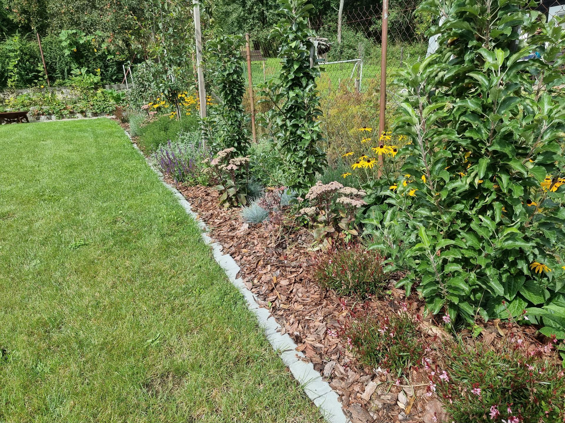 Rok v zahrade... - Obrázok č. 50