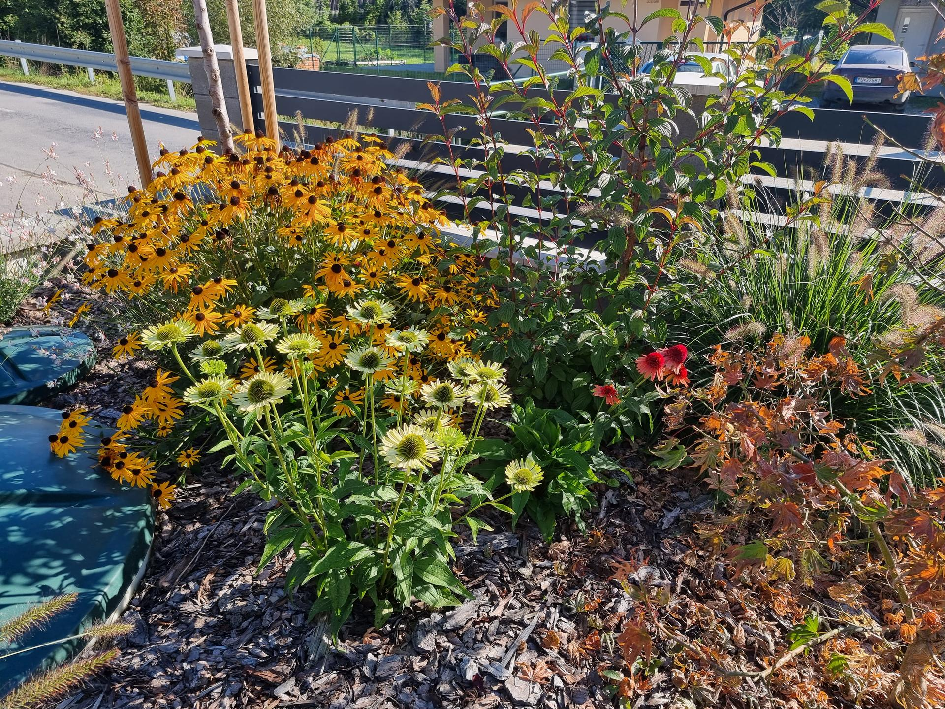 Rok v zahrade... - Obrázok č. 56
