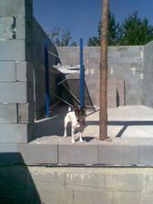 pozooor stavby-vedúci prišiel na kontrolu :-)