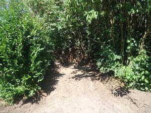Vybagrovali a rozvezli do plochy i prastarý kompost