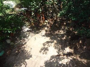 """Z okolí """"kompostu"""" budeme muset vyházet desetiletí shromažďované """"poklady"""" jako rozbité hrnce, staré cihly, květináče... :-)"""