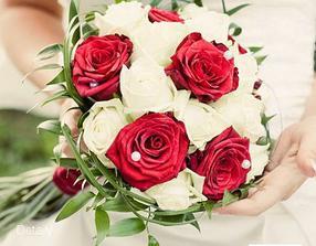 Kdyby nebyly tulipány, tak růže vypadají taky pěkně:-)