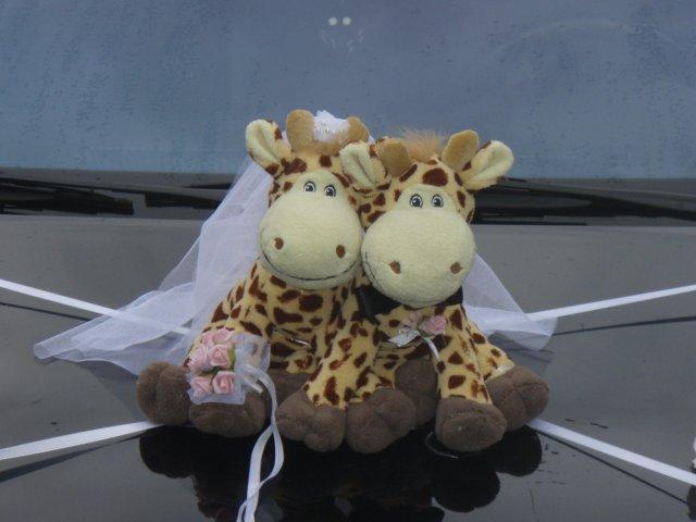 Zuzka a Lubino - detail na žirafky