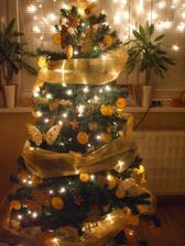 Vianoce 2010-2011