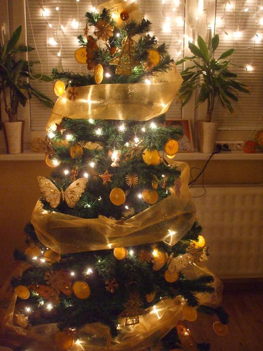 Zmeny nasho strom ceka 2003 - 2016 - Vianoce 2010-2011