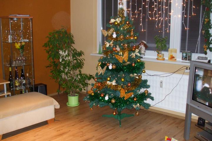 Zmeny nasho strom ceka 2003 - 2016 - Vianoce 2008