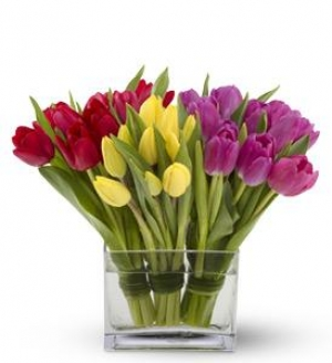 Dámy, krásny zajtrajší sviatok a záplavu kvetov vám praje Hotel Bratislava. - Obrázok č. 1