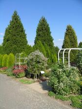 Dendrologická zahrada - tady to bude