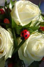 svatební kytice do kterémi maminka přidalal mojí oblíbenou berušku