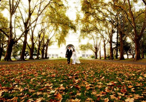 Podzimní svatba - Obrázek č. 17