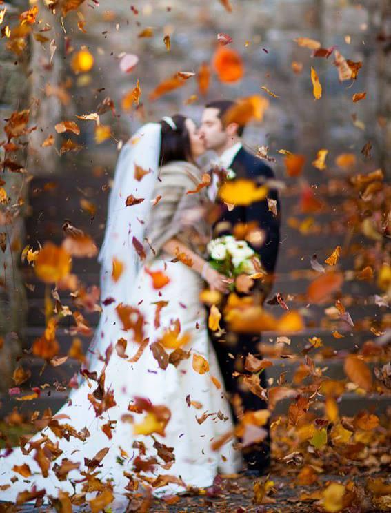 Podzimní svatba - Obrázek č. 11