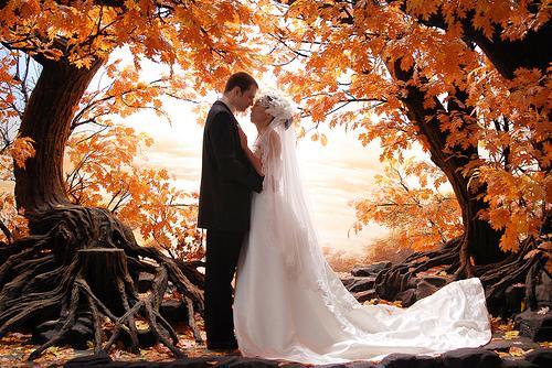 Podzimní svatba - Obrázek č. 9