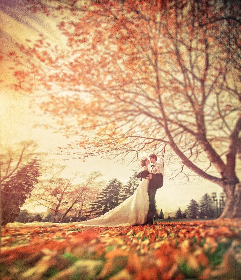 Podzimní svatba - Obrázek č. 15