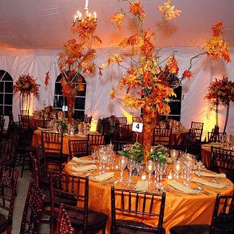 Podzimní svatba - Obrázek č. 97