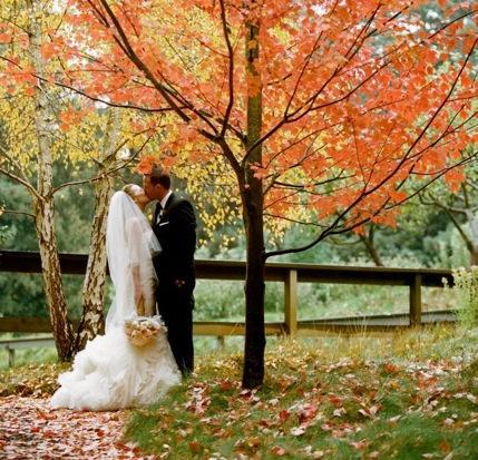 Podzimní svatba - Obrázek č. 29