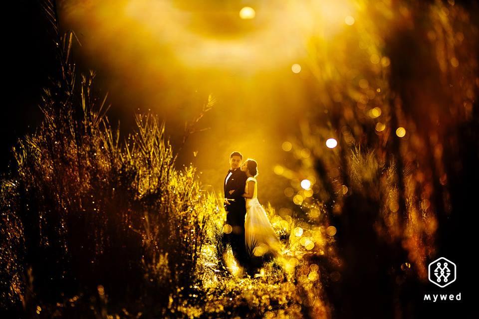 Snové svatební fotografie - Obrázek č. 13