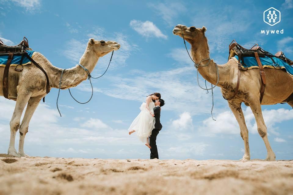 Snové svatební fotografie - Obrázek č. 41