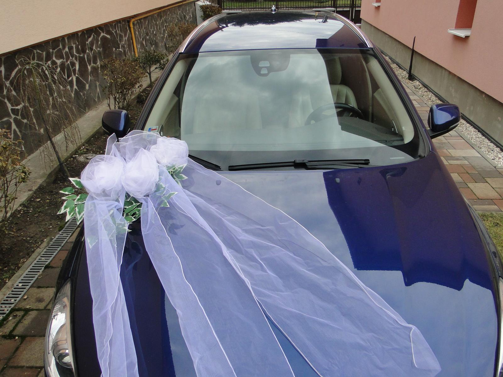 Výzdoba na auto A 043 - Obrázok č. 1