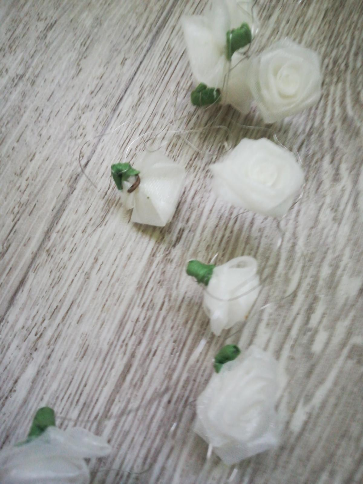 Ružičky na drote  - Obrázok č. 1