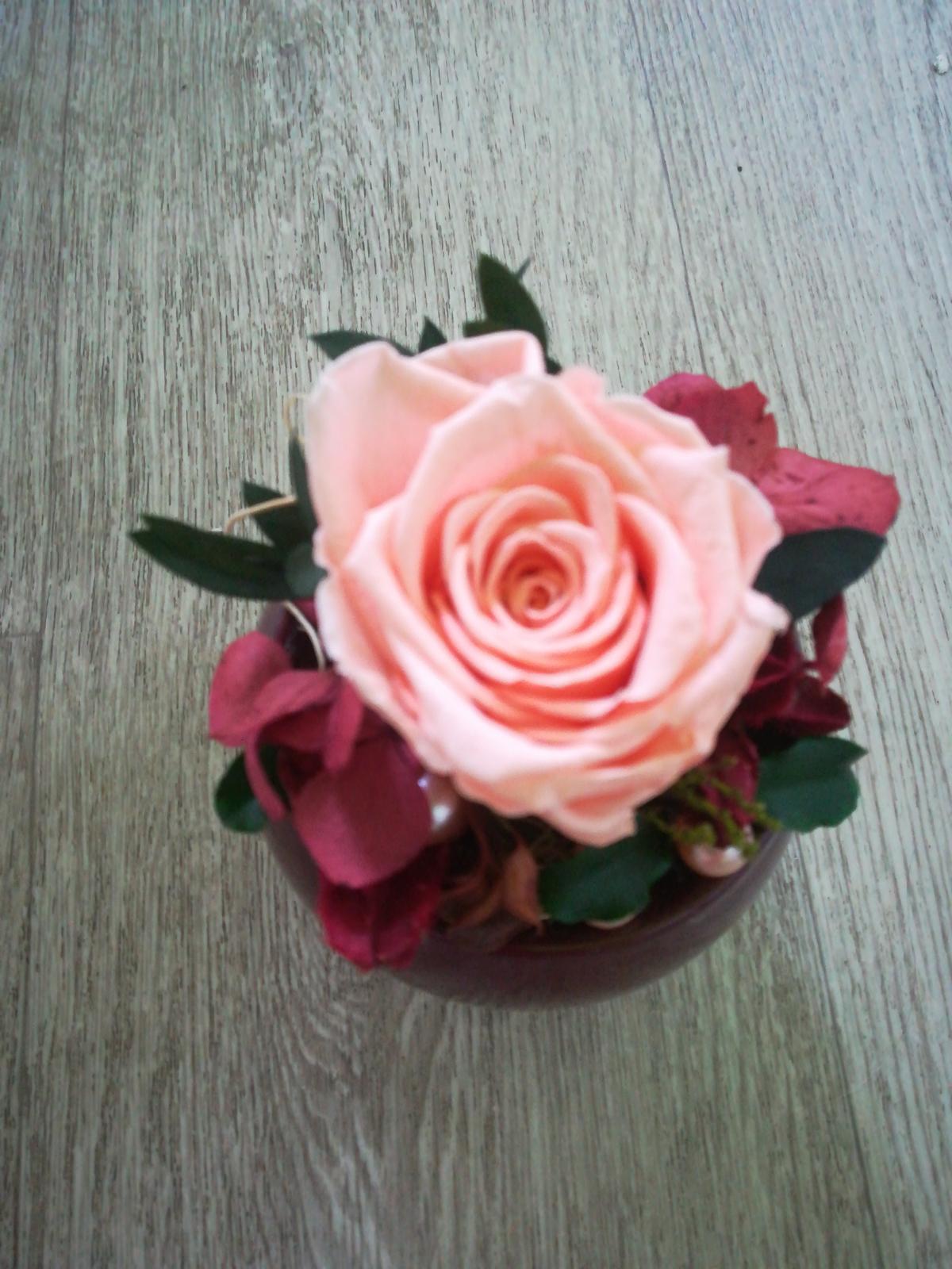 Stabilizovaná ruža v keramickom kvetináči - Obrázok č. 1