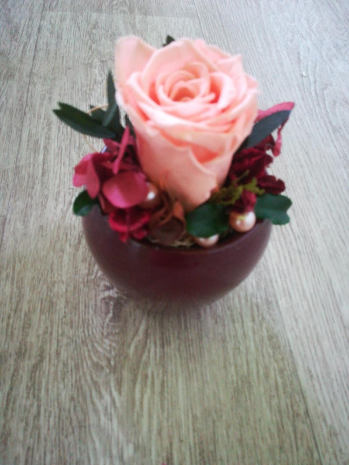 Stabilizovaná ruža v keramickom kvetináči - Obrázok č. 2