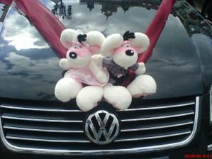 Didlínci na autě
