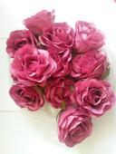 latkové tmavě růžové růže,