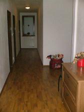 Pak nasleduje chodba - podlaha lamino - Baumax - barva olse