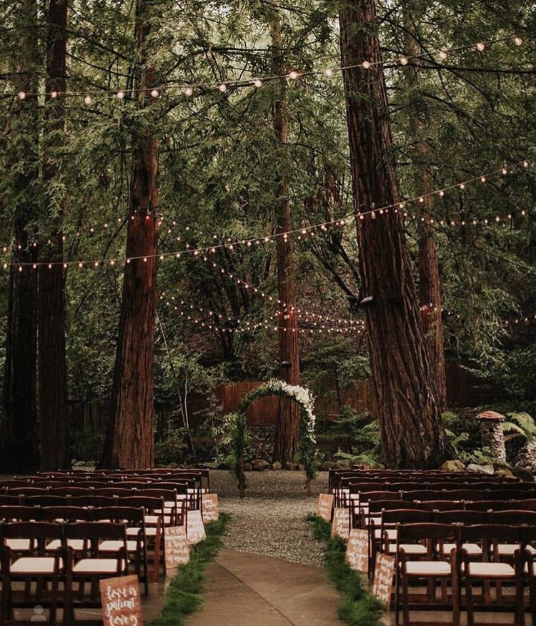 Svatební stolování, dekorace a další - Obrázek č. 39