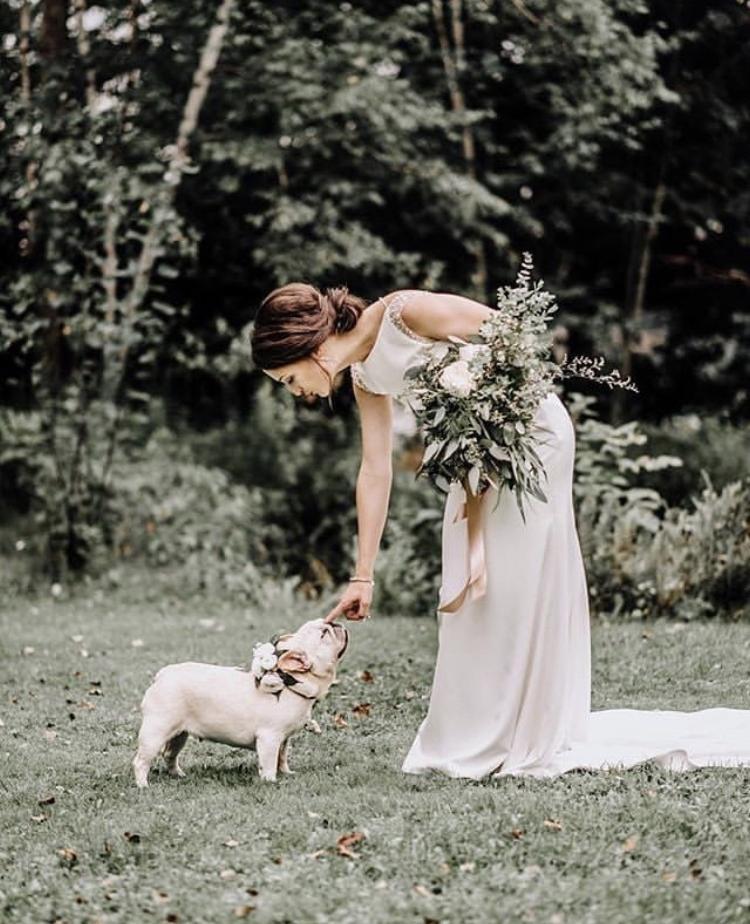 Chlupatí svatebčané - Obrázek č. 4