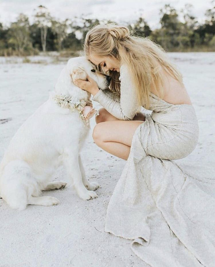 Chlupatí svatebčané - Obrázek č. 5