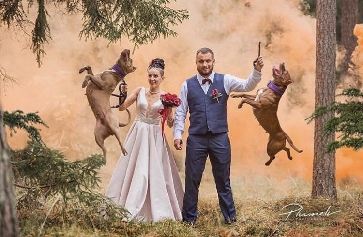 Chlupatí svatebčané - Obrázek č. 11