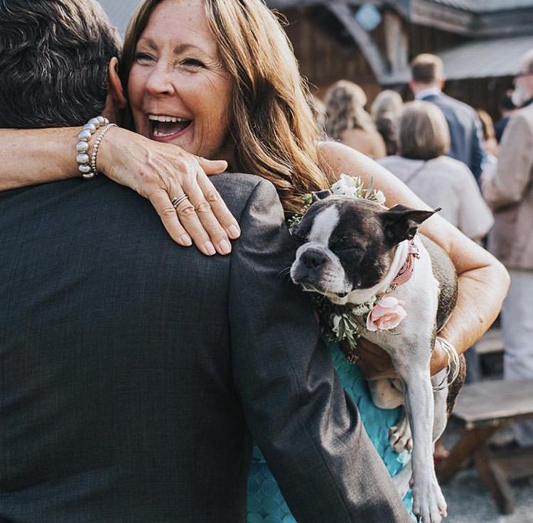 Chlupatí svatebčané - Obrázek č. 22
