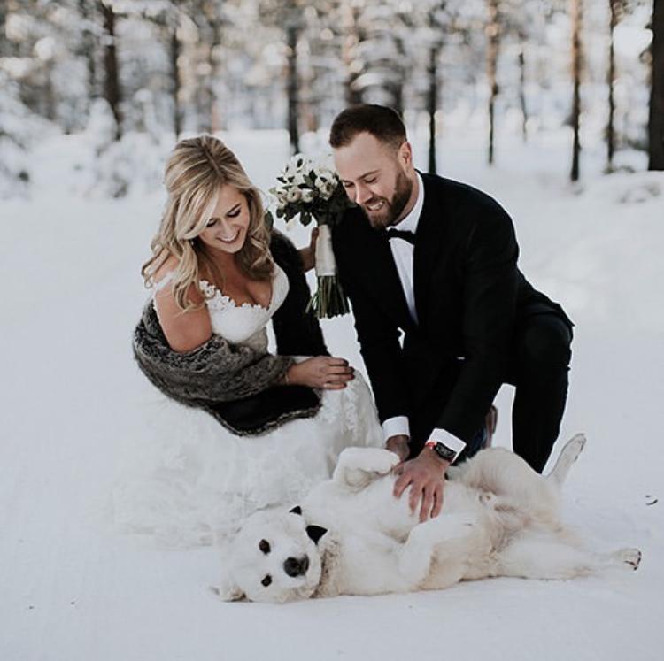 Chlupatí svatebčané - Obrázek č. 23