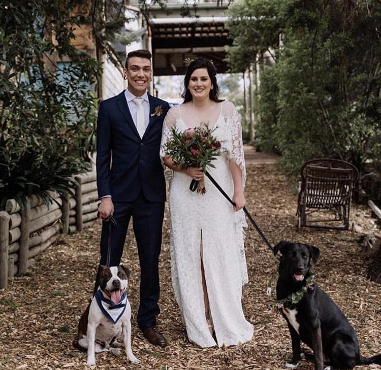 Chlupatí svatebčané - Obrázek č. 24