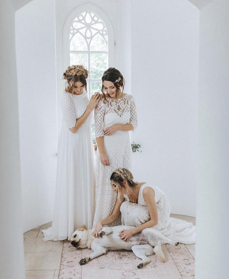Chlupatí svatebčané - Obrázek č. 35