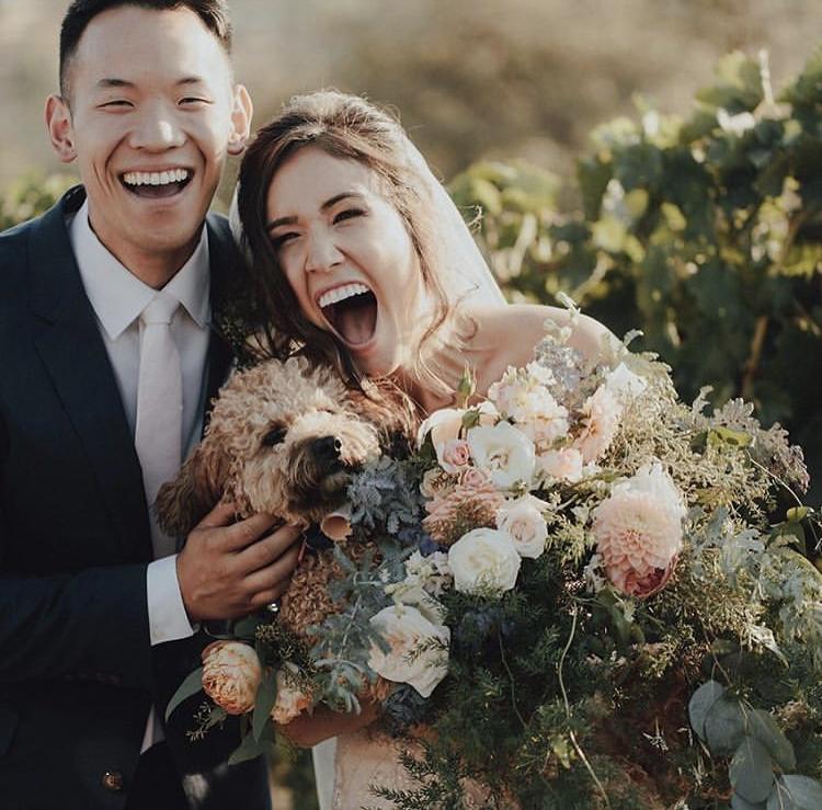 Chlupatí svatebčané - Obrázek č. 44