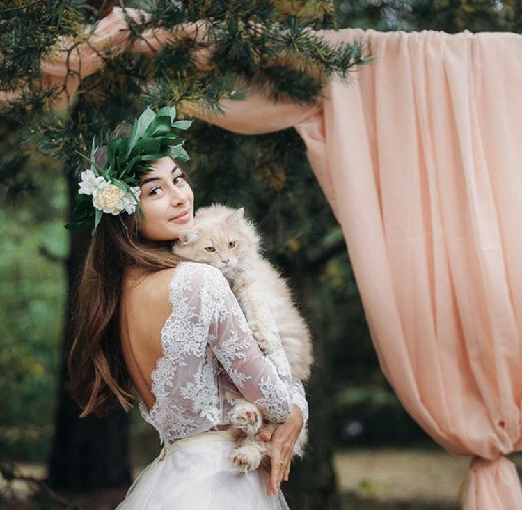 Chlupatí svatebčané - Obrázek č. 54