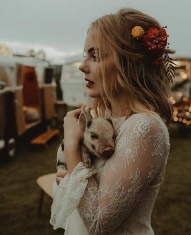 Chlupatí svatebčané - Obrázek č. 58
