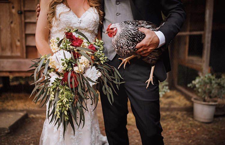 Chlupatí svatebčané - Obrázek č. 61